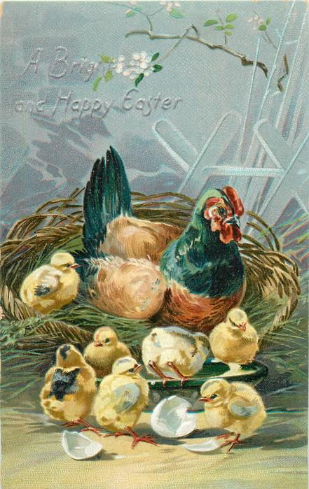 A BRIGHT AND HAPPY EASTER  hen sits in basket with one chick, six others on & around bowl