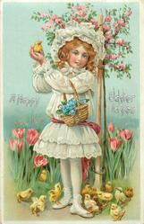 A HAPPY EASTER TO YOU  girl  holds chick up in both hands, basket hangs from  left arm, many chicks below in front of tulips
