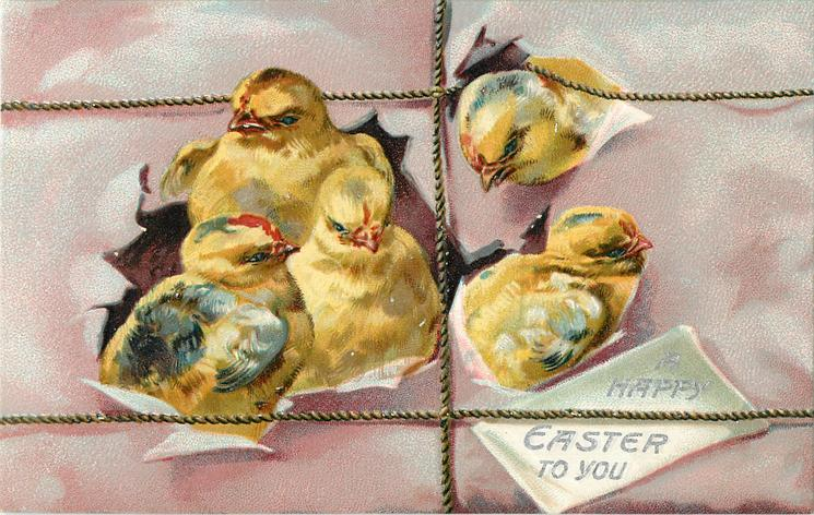 A HAPPY EASTER TO YOU  five chicks breaking through  purple package, string tied