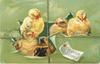 EASTER GREETINGS  five chicks breaking through green package, string tied