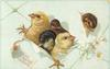 LOVING EASTER GREETINGS  five chicks breaking through pale-green-wrapped package tied with pale green ribbon