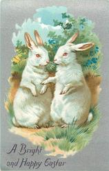 A BRIGHT AND HAPPY EASTER  two white rabbits sit up
