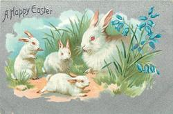 A HAPPY EASTER  four rabbits, mother rabbit looks left at three small rabbits, bluebells right