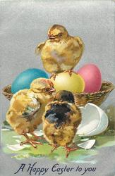 A HAPPY EASTER TO YOU  chick stands on yellow egg, blue & red eggs also in basket & another broken outside basket