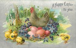 A HAPPY EASTER TO YOU  chickens and chicks, hen sits on coloured eggs, purple violets around, three chicks left, one right