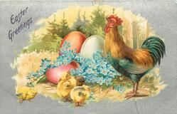 EASTER GREETINGS  chickens and chicks, cockerel right, two red and one white egg, blue florget-me-nots, four chicks