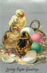 LOVING EASTER GREETINGS  three chicks, green, pink and white eggs, basket behind, another white egg broken