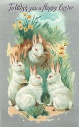 TO WISH YOU A HAPPY EASTER  four rabbits, rabbit in centre looks front out of hole, three others face first rabbit