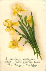I SINCERELY WISH YOU WHAT I KNOW YOU WILL HAVE, A HAPPY BIRTHDAY  yellow iris