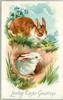 LOVING EASTER GREETINGS  brown and white rabbit watches from above as white rabbit leaves burrow