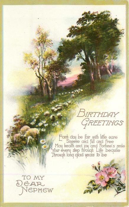 Birthday Greetings To My Dear Nephew Sheep Tuckdb Postcards