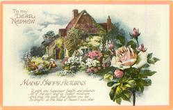 TO MY DEAR NEPHEW  MANY HAPPY RETURNS cottage & garden, roses