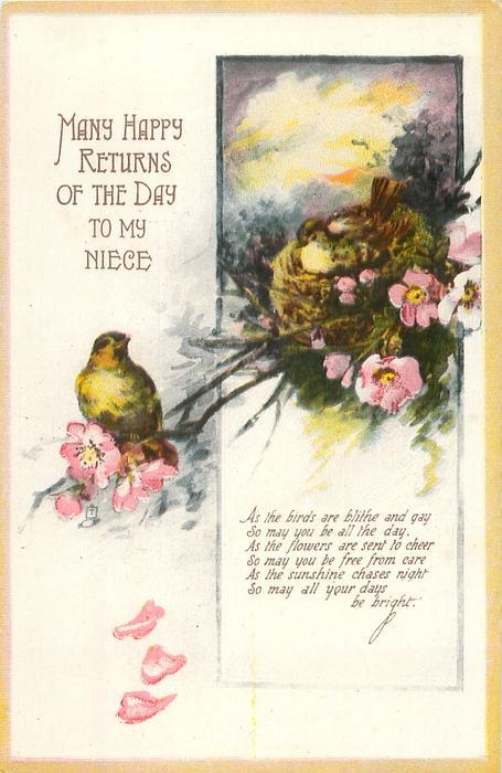 MANY HAPPY RETURNS OF THE DAY TO MY NIECE  birds, nest & blossom