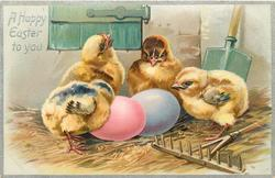 A HAPPY EASTER TO YOU  four chicks behind pink egg left, pale blue egg right