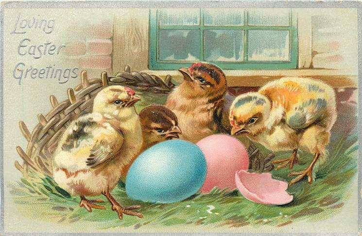 LOVING EASTER GREETINGS  four chicks behind blue egg left, pink egg & shell right