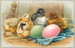 LOVING EASTER GREETINGS  four chicks behind green egg left, pink right
