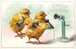 TO WISH YOU A HAPPY EASTER  two chicks, one uses telephone