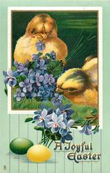 A JOYFUL EASTER  two chicks peck at violets, one facing front, one left, green & yellow egg, violets