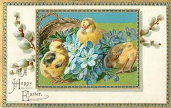 A HAPPY EASTER  three chicks around  blue violets in front of basket, pussy willow in white inner border, blue/gilt border