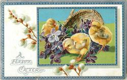 A HAPPY EASTER  three chicks around  purple violets in front of basket, pussy willow in white inner border to left, blue/silver border