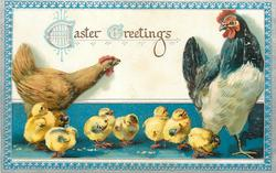 EASTER GREETINGS  seven chicks, tan hen looks at large black and white rooster, chicks on blue ground, blue/silver border