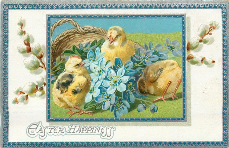 EASTER HAPPINESS  three chicks around  blue violets in front of basket, pussy willow in white inner border, blue/silver border