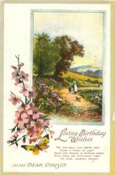 LOVING BIRTHDAY WISHES  TO MY DEAR COUSIN  rural scene, woman, child & dog on path