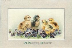 A HAPPY EASTER  four chicks behind violets