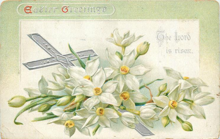 EASTER GREETINGS  with narcissi