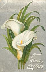 A HAPPY EASTER  two calla lilies, three stems at bottom, foliage frond behind