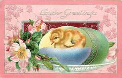 EASTER GREETINGS  one chick in large egg, dog-roses left, green egg right