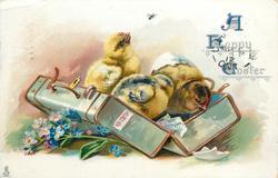 A HAPPY EASTER  three chicks in suitcase, forget-me-nots