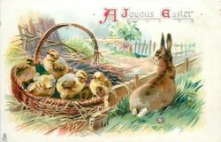 A JOYOUS EASTER  five chicks in basket, rabbit looks over low fence