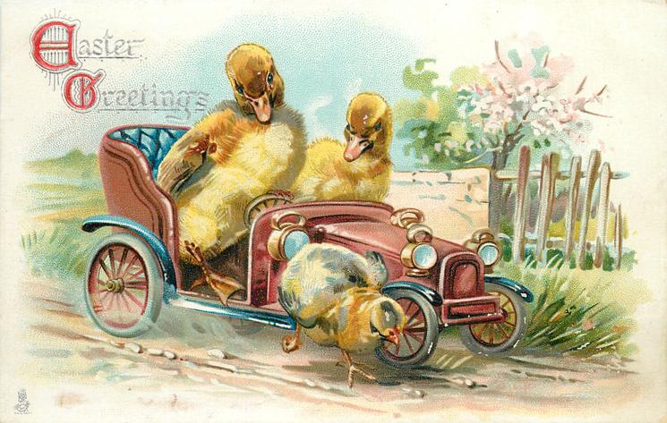 EASTER GREETINGS  two ducklings in car going right looking down at chick near right front wheel