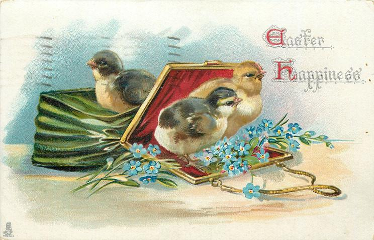 EASTER HAPPINESS  two chicks coming out of handbag, another sits on it, blue forget-me-nots