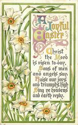 A JOYFUL EASTER  narcissi
