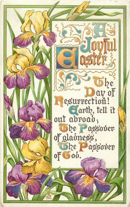 A JOYFUL EASTER  iris