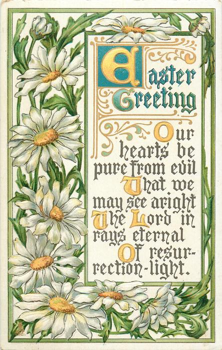 EASTER GREETING  daisies