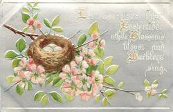 LET US REJOICE THIS EASTERTIDE WHILE BLESSINGS BLOOM AND WARBLERS SING  nest with eggs in blossom tree