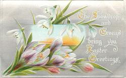 THE SNOWDROPS AND CROCUS BRING YOU EASTER GREETINGS  snowdrops and others
