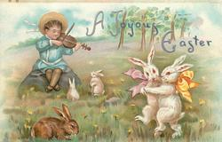 A JOYOUS EASTER  child plays violin whilst rabbits dance