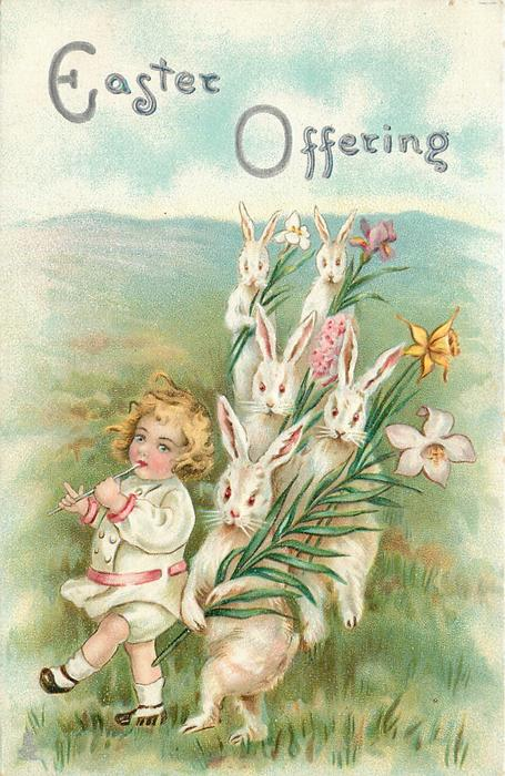 EASTER OFFERING  boyl walks left, playing flute beside white rabbits carrying lilies
