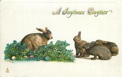 A JOYOUS EASTER  one rabbit left on greens and eggs, three rabbits on right face left