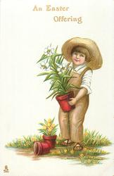 AN EASTER OFFERING  boy with Easter lily in pot