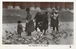 THE PIGEONS AT ST. PAUL'S  four adults, two children, man in hat has birds on arm