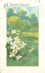 A JOYFUL EASTER  white violets lower left