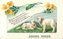 EASTER PEACE  two lambs, buttercups
