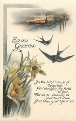 EASTER GREETING  swallows, daffodils
