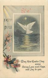 EASTER PEACE  dove & flowers