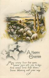 A HAPPY EASTER  sheep, ivy